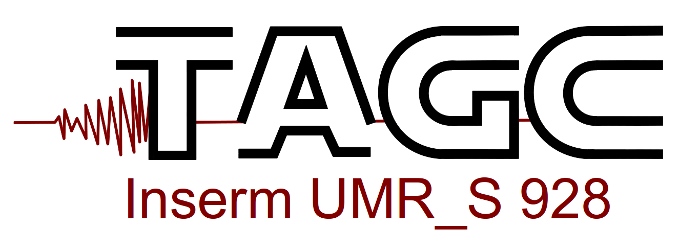Logo IGC